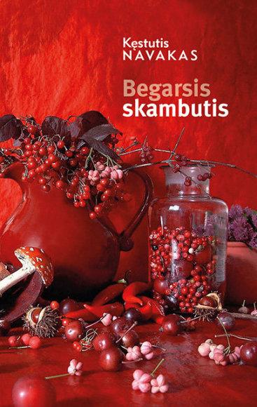 """Kęstutis Navakas """"Begarsis skambutis"""" (Vilnius: Tyto alba, 2015)"""