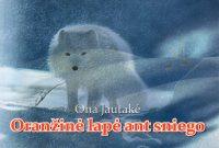 """Ona Jautakė """"Oranžinė lapė ant sniego"""" (Utena: Kamonada, 2013)"""