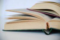Grigorijaus Kanovičiaus literatūros premija: laukiama pasiūlymų